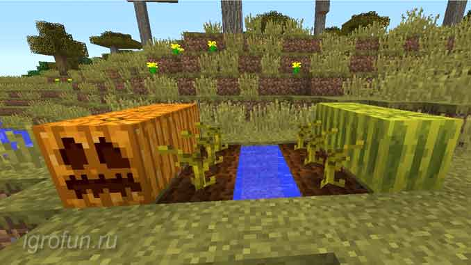 Тыквы и арбузы растут в игровом мире Майнкрафт